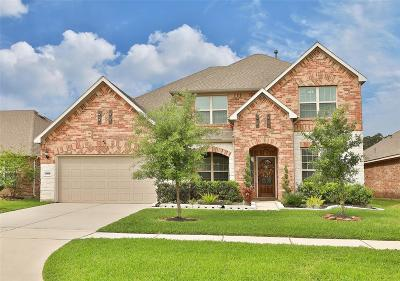 Tomball Single Family Home For Sale: 24615 Emerald Pool Falls Drive
