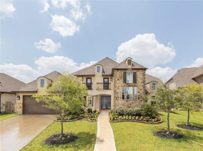 Friendswood Single Family Home For Sale: 1302 Tamina Pass Lane