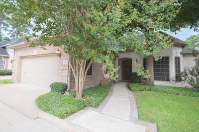 Houston Single Family Home For Sale: 29 Champion Villa Drive
