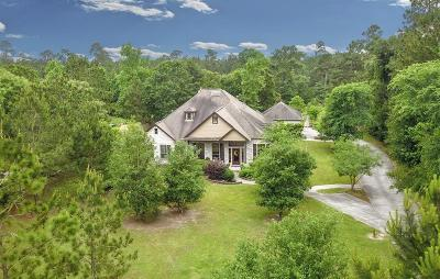 Montgomery Single Family Home For Sale: 15677 Connie Lane