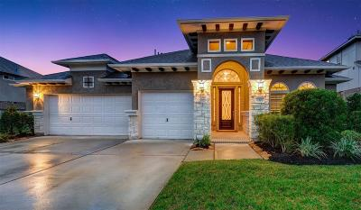 Tomball Single Family Home For Sale: 30 Winter Thicket Place