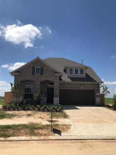 Fulshear Single Family Home For Sale: 30307 Blue Mist Bend