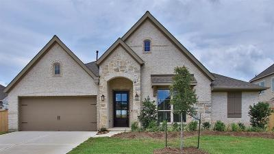 Tomball Single Family Home For Sale: 21427 Martin Tea Trail