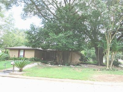 Tomball Single Family Home For Sale: 31202 Antonia
