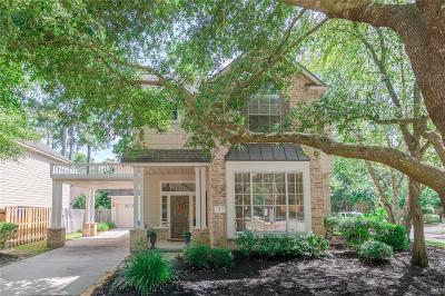Spring Single Family Home For Sale: 2 Wild Aster Court