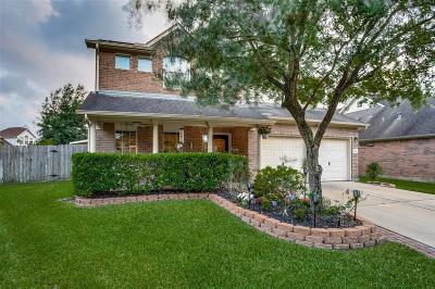 Houston Single Family Home For Sale: 11118 Cliffrose Court