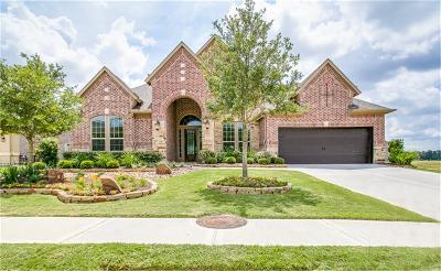 Tomball Single Family Home For Sale: 25310 Hollowgate Park Lane