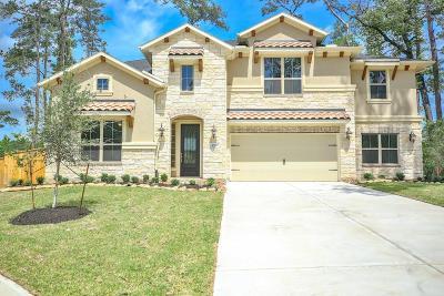 Pinehurst Single Family Home For Sale: 1042 Brickhaven Falls Lane