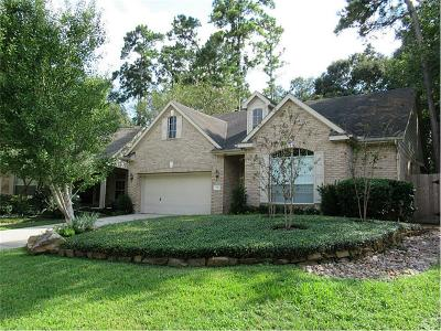 The Woodlands Single Family Home For Sale: 123 Robindale Circle