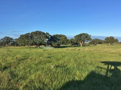 Lavaca County Farm & Ranch For Sale: Tbd County Road 400