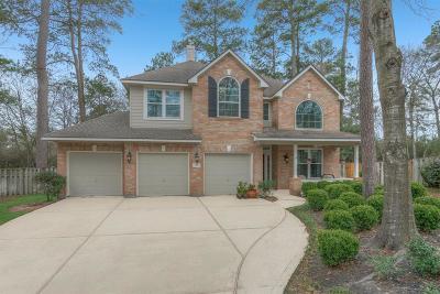 Spring Single Family Home For Sale: 27 Vinca Trail