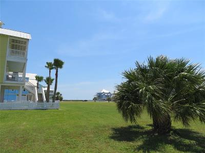 Galveston Residential Lots & Land For Sale: 3818 Periwinkle
