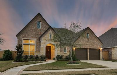 Sugar Land Single Family Home For Sale: 11 Honor Cove