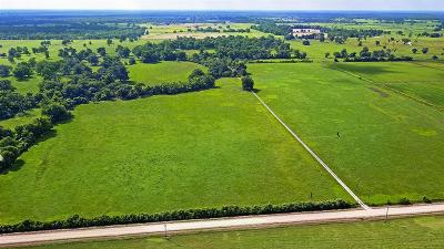 Farm & Ranch For Sale: 1626 County Rd 101