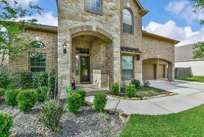 Houston Single Family Home For Sale: 14306 Mopan Springs Lane
