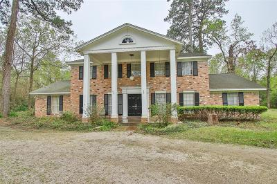 Houston Single Family Home For Sale: 1740 Palmetto Lane