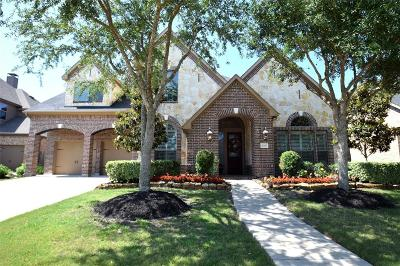 Katy Single Family Home For Sale: 4706 Deermeadow Falls Lane
