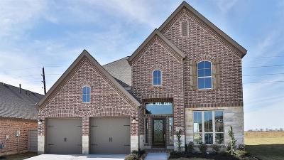Manvel Single Family Home For Sale: 4304 Pine Harvest Lane