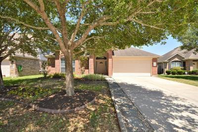 Dickinson Single Family Home For Sale: 3006 Amber Sky Lane