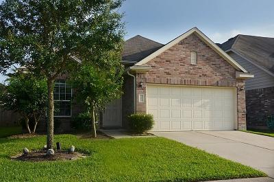 Manvel Single Family Home For Sale: 31 Supiro Drive