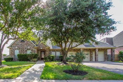 Sugar Land Single Family Home Option Pending: 15211 Black Falls Lane