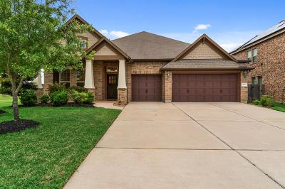 Tomball Single Family Home For Sale: 13603 Lake Vista Drive