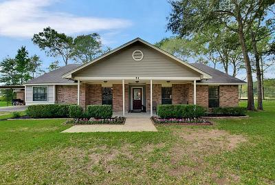 New Caney Single Family Home For Sale: 51 Chestnut Rdg