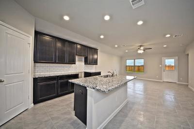 Rosenberg Single Family Home For Sale: 8810 Jamison Drive
