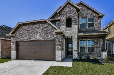 Houston Single Family Home For Sale: 3611 Barkers Run Drive