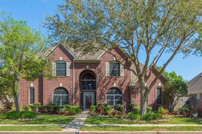 Friendswood Single Family Home For Sale: 1203 Eagle Lakes Drive