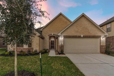 Magnolia Single Family Home For Sale: 8723 Ute Creek Lane