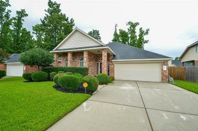 Spring Single Family Home For Sale: 1015 Spring Lakes Haven Drive