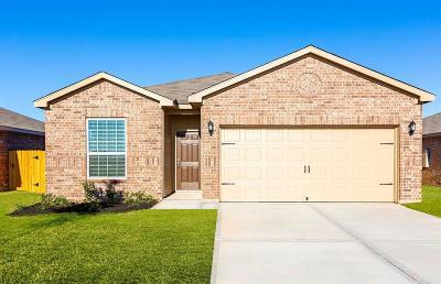 Texas City Single Family Home For Sale: 2307 Lagan Lane