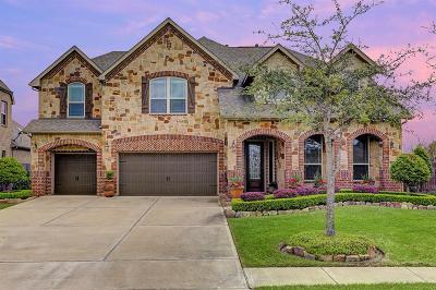 Friendswood Single Family Home For Sale: 913 Ember Hills Lane