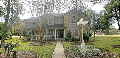 Friendswood Single Family Home For Sale: 912 Layfair Place