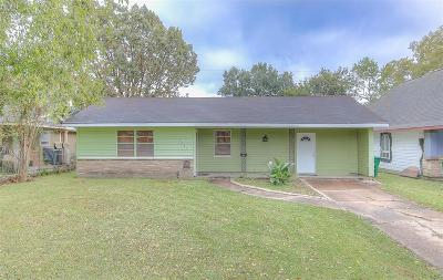 Houston Single Family Home For Sale: 1431 Loper Street