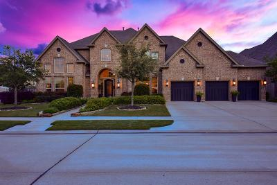 Katy Single Family Home For Sale: 3007 Brighton Sky Lane