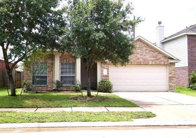 Tomball Single Family Home For Sale: 9615 Elizabeths Glen Lane