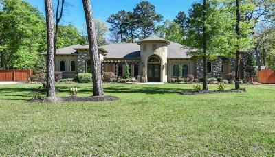 Porter Single Family Home For Sale: 19337 Riverwalk Drive