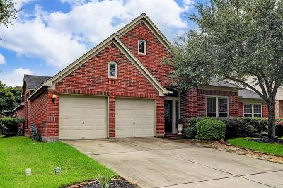 Friendswood Single Family Home For Sale: 2516 Rockygate Lane