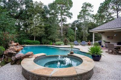 Spring Single Family Home For Sale: 3519 Blue Cypress Drive