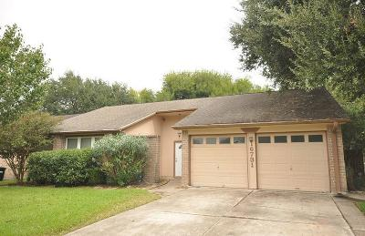 Friendswood Single Family Home For Sale: 16731 Schooners Way Way