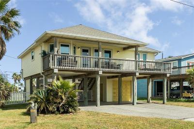 Galveston Single Family Home For Sale: 22018 Termini San Luis Pass Road
