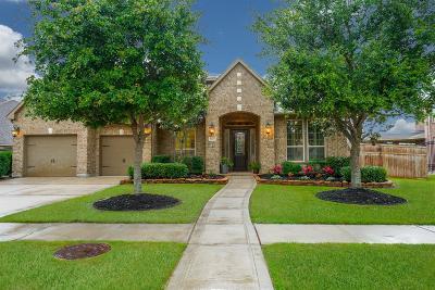 Fulshear Single Family Home For Sale: 6222 S Saddle Creek Lane