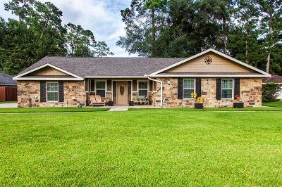 Single Family Home For Sale: 28802 Enchanted Drive
