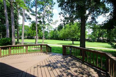Montgomery Single Family Home For Sale: 208 Ruskin Drive