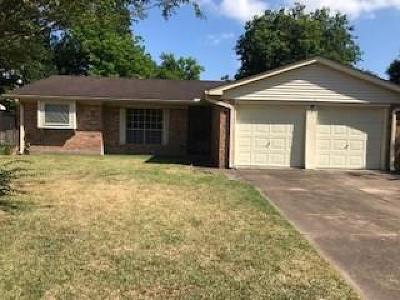 Houston Single Family Home For Sale: 1303 Twinbrooke Drive