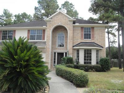 Houston Single Family Home For Sale: 3823 Ashlee Lane