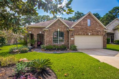Montgomery Single Family Home For Sale: 119 Misty Harbor Dr