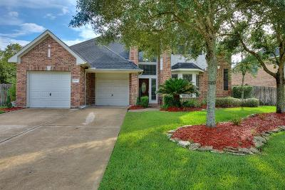 Fort Bend County Single Family Home For Sale: 6430 Dylan Springs Lane